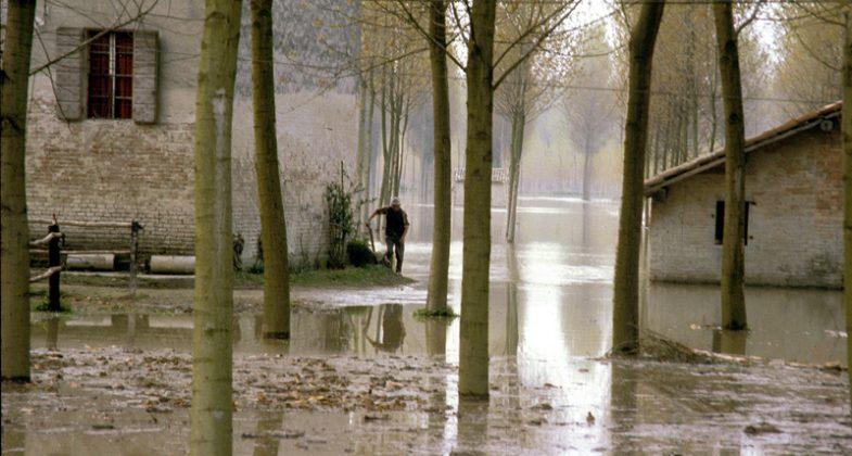 Le terre della bassa dopo l'alluvione del Po