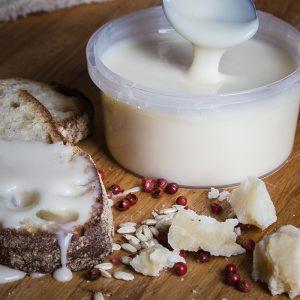 Food Emilia: italian taste parmesan cream