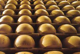 Parmigiano Reggiano, il miglior formaggio al mondo