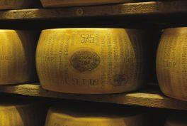 Der Parmigiano Reggiano, ein gesundes Geschmackskunstwerk